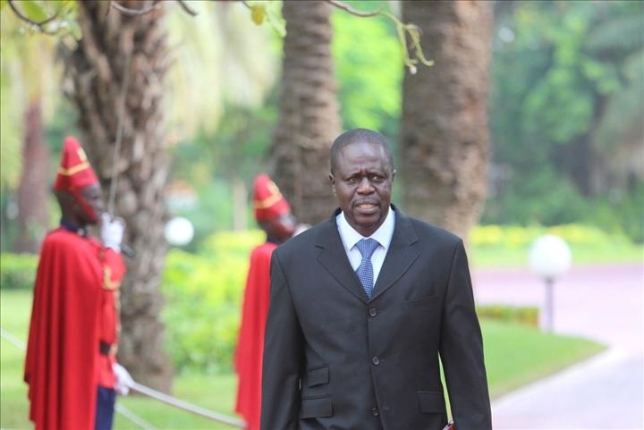 Sénégal – Coupe abusive de bois : Les députés exigent un durcissement despeines