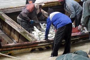 Mauritanie/Sénégal: Octroi de Licences de pêche en Mauritanie : Macky SALL annonce une conclusion « très prochaine»