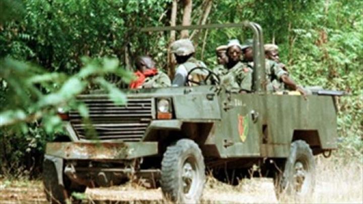 Ziguinchor : Deux rebelles mis en prison, des munitions saisies et des champs de chanvre détruits#Sénégal