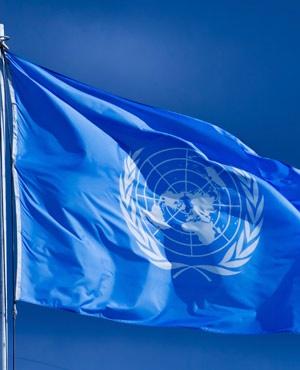 DRC, Mali groups join UN blacklist