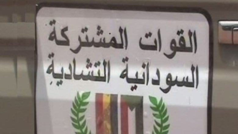 Tchad – Fusion des forces mixtes Tchad-Soudan-Centrafrique enFMTS
