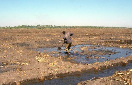 Tchad : un projet de réinsertion économique des groupes vulnérables dans le bassin duLac