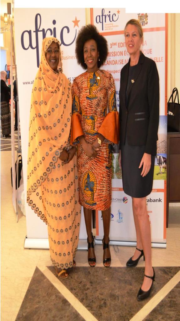 Tchad – Bientôt la 4ème édition de la Mission commerciale agro-industrielle Benelux-Tchad