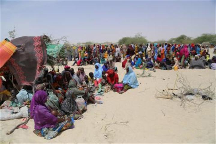 Le Niger abrite plus de 1.400 demandeurs d'asile soudanais dans le Nord(officiel)