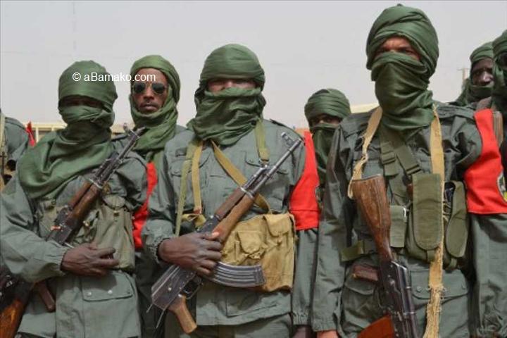Mali – Vingt-deux membres d'une unité militaireenlevés