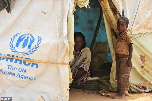 Mali/Niger : UN closes two Malian refugee camps in Niger, citing security fears